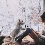 珍しい犬の名前!季節や生まれ月をフランス語やドイツ語にすると?